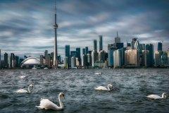 注册加拿大社团等非营利组织