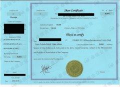 新加坡公司注册证书与注册纸BIZFILE