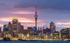 新西兰公司注册查询方法